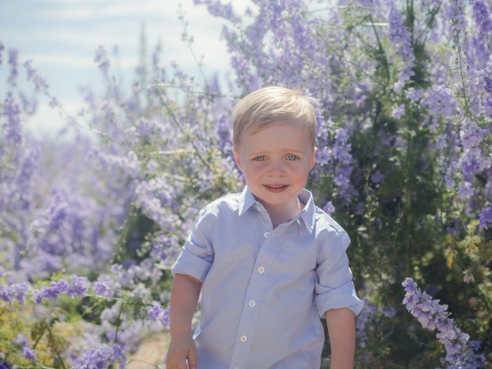 flower fields Worcestershire child portrait