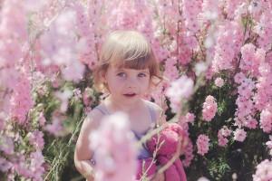 Flower petal company child photography delphiniums