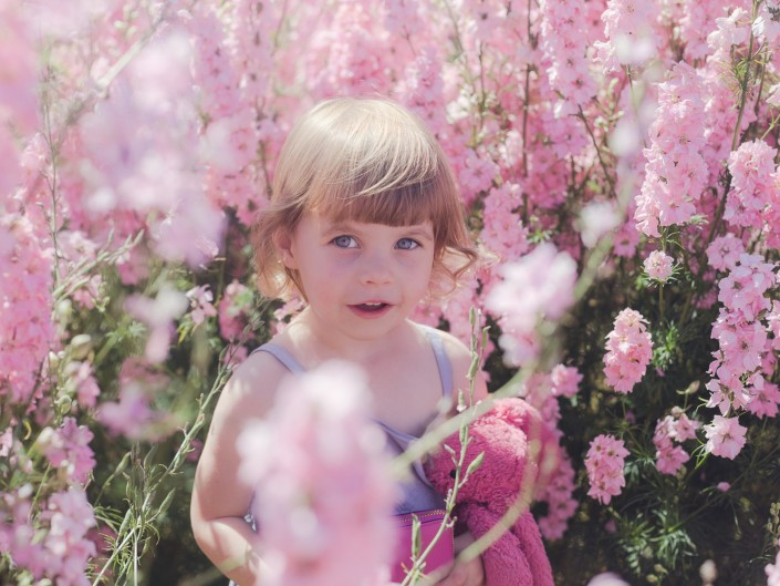 Flower petal company child photography delphiniums