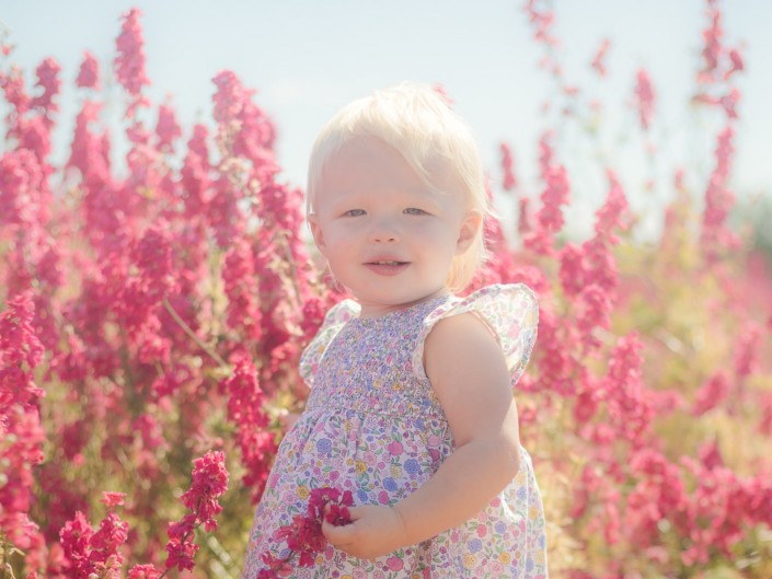 Gloucester Photographer Toddler delphiniums flower fields