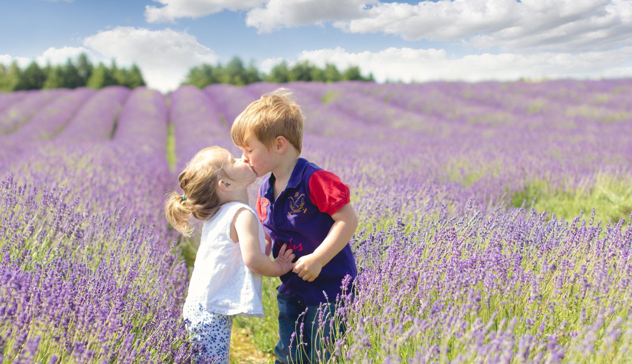 Kissing in lavender fields