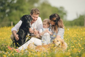 Family with baby and dog in buttercups, Gloucester Photographer
