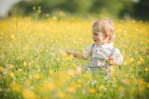 Toddler sitting in field of buttercup, Gloucestershire Photography