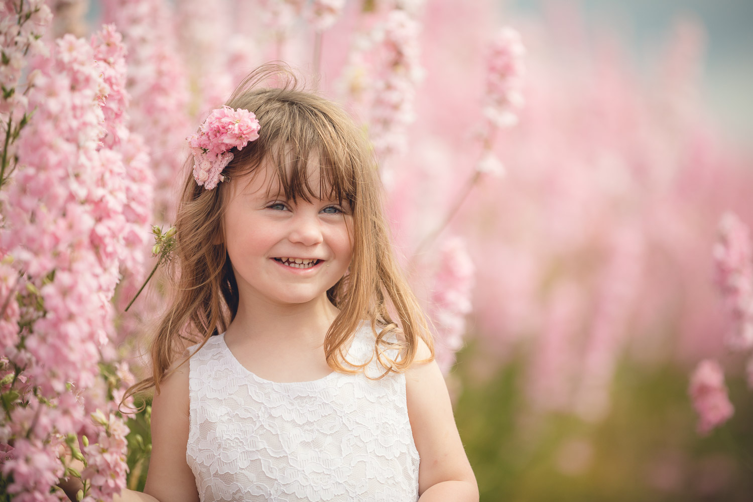 Child photography flower fields Worcestershire