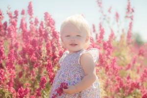 Toddler delphiniums flower fields Worcestershire