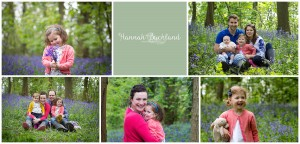 Gloucestershire Bluebell Photo sessions