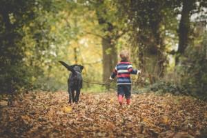 Gloucester family photographer autumn photoshoot